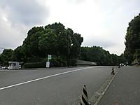 Img_0001_4